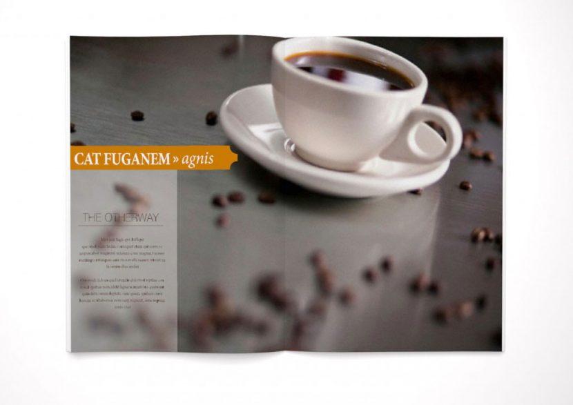 Zeitschrift cafe vergnügen