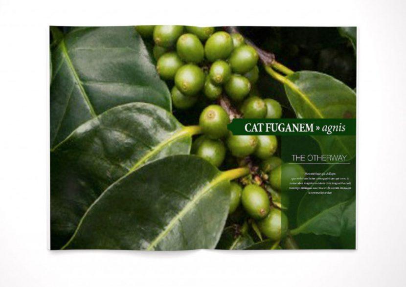 Zeitschrift cafe Pflanze